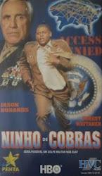 Ninho de Cobras