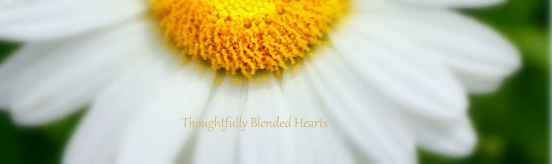 Thoughtfully Blended Hearts