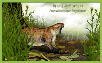 Propalaeocastor