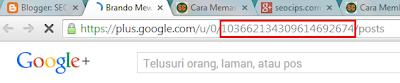 Id profile fanpage Google Plus