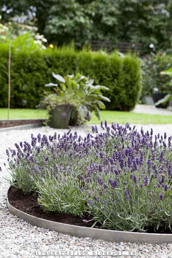 växjö garden center
