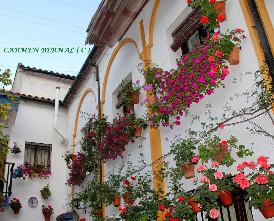 Las colecciones de mi vida ventanas y balcones patios - Imagenes de patios andaluces ...