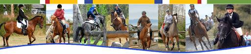 Whidbey Island Pony Club Blog