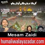 http://www.humaliwalayazadar.com/2014/10/mesam-zaidi-nohay-2015.html