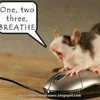 Mouse giving mouse mouth-to-mouth - one, two, three, BREATHE!!!