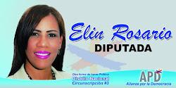 Candidata a Diputada por la Circ.3 DN