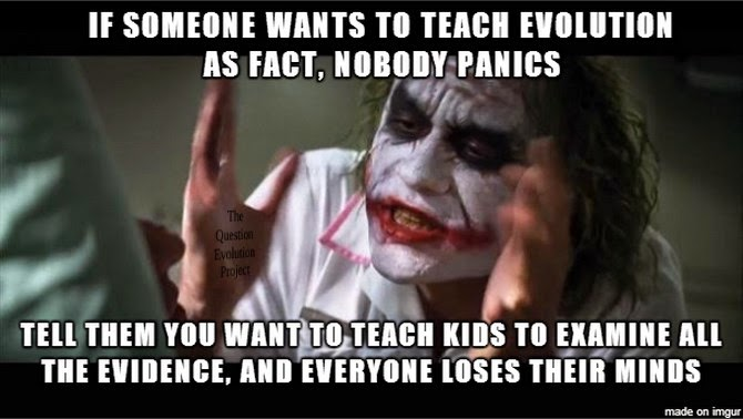 (Evolutionists) Is calling someone stupid just an excuse?