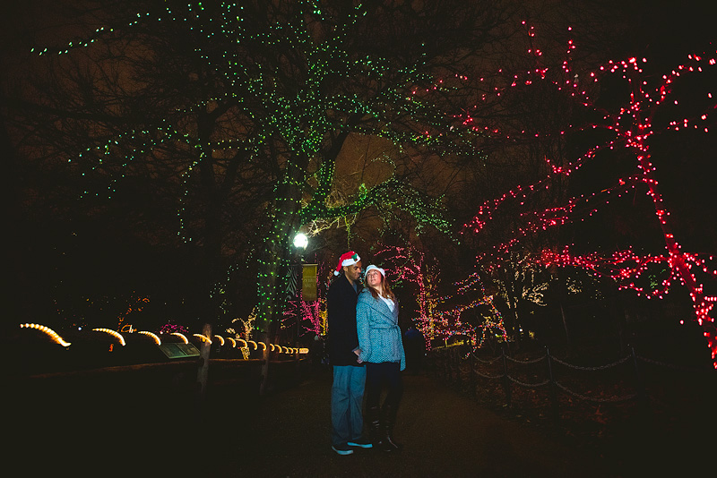 Lincoln Park Zoo Lights Engagement