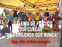 GALERIA DE FOTOS 300 CUECAS MAS CHILENOS QUE NUNCA