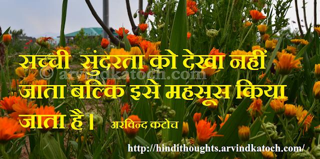 True Beauty, Hindi, Thought, Quote, felt