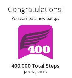 400000 Steps