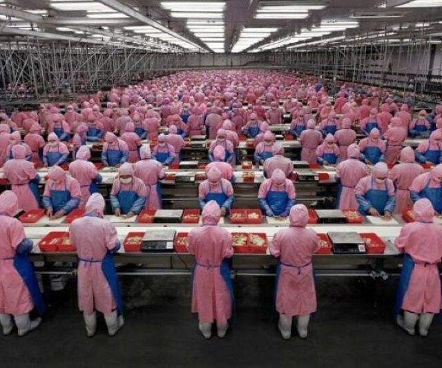 fabriek lopende band