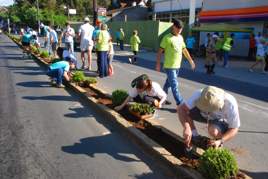 Plantio de mudas mobiliza voluntários no canteiro central da Avenida Alberto Torres