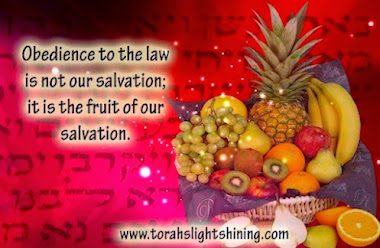 Torah - The Fruit of our Salvation