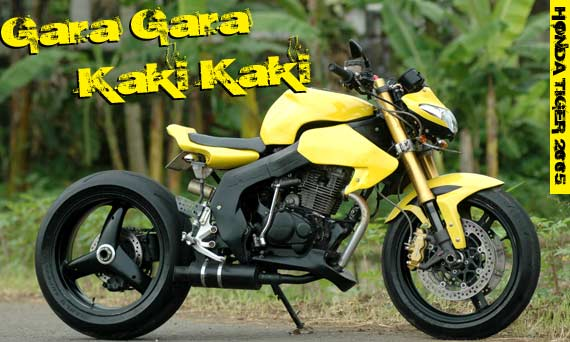 tiger modifikasi tiger modifikasi touring honda tiger modifikasi title=