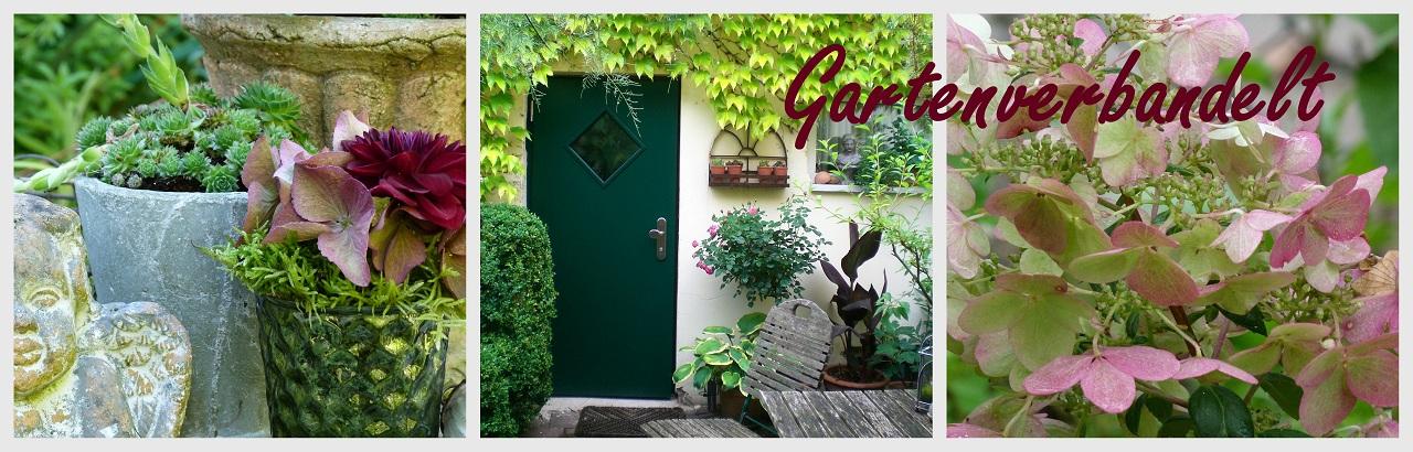 Gartenverbandelt