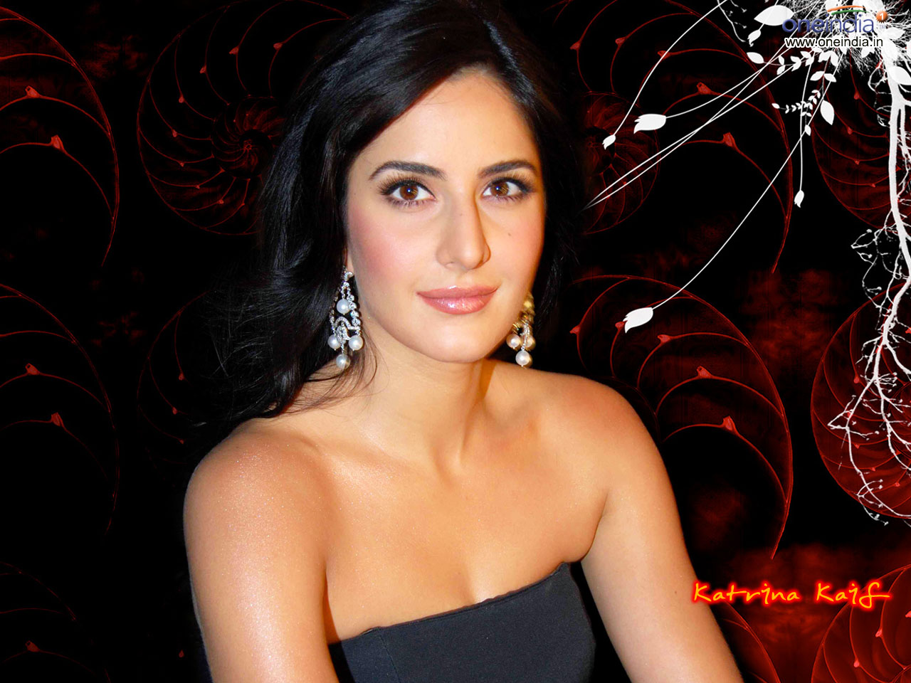 Katrina Kaif's Sexy Pictures: Wallpapers of Katrina Kaif