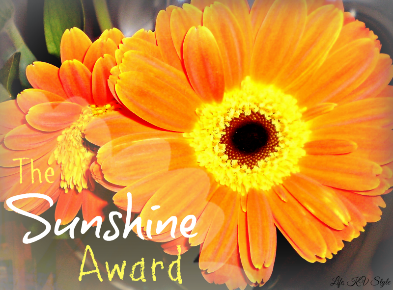 http://katyavalerajewelry.blogspot.com/2014/06/the-sunshine-award.html