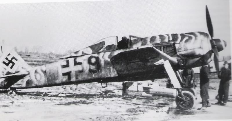 Fw190F-8winter.jpg