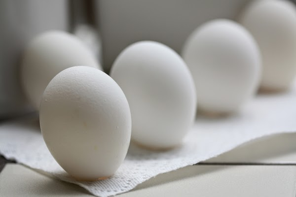 Here are 35 things you probably believe… but are total lies. Everything you thought is wrong - It's possible to stand an egg on its head any day of the year