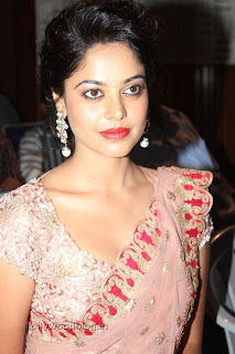 Actress Bindu Madhavi Saree Picture Stills 014.jpg