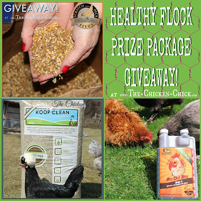 Healthy Flock Prize Package Giveaway at The Chicken Chick's Clever Chicks Blog Hop