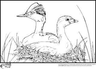 stork nesting coloring pages