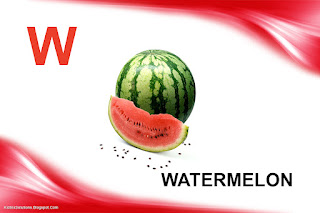 Tom Rosenthal  Watermelon