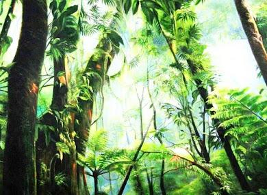 Paisajes de la Selva