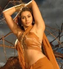 namitha-hot-in-saree-south-actress-6