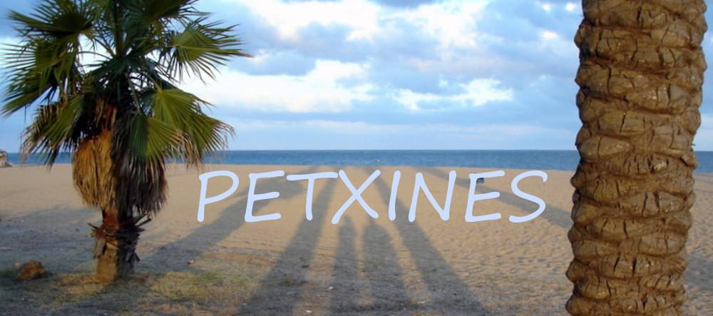 PETXINES