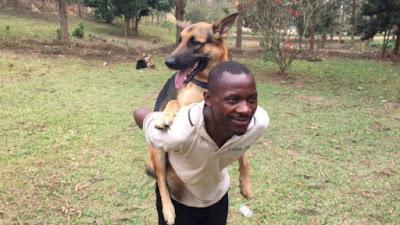 Trong các loài gia súc, gia cầm và thú mà người nuôi làm cảnh hoặc dùng trong lao động, sản xuất, chó có vị trí đặc biệt hơn cả.