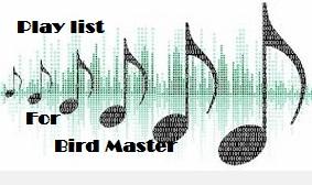 Cara Me Master Burung | Cendet | Kacer | Murai | Cucak Ijo
