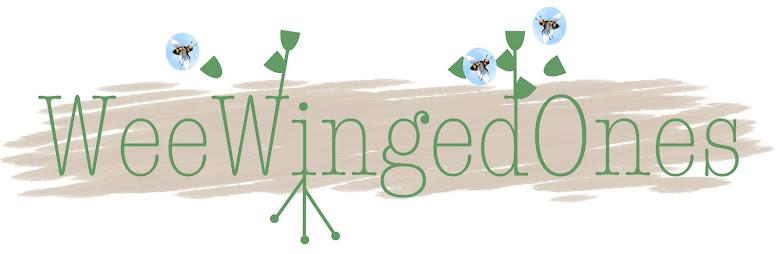 Wee Winged Ones
