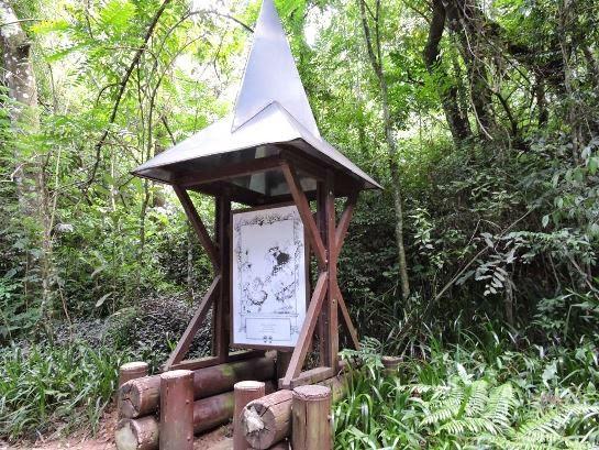 Passeio no Bosque Alemão + Look do Passeio