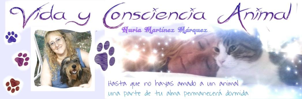 Vida y Consciencia Animal