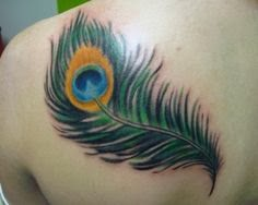 Peacock feather tattoos on women upper back