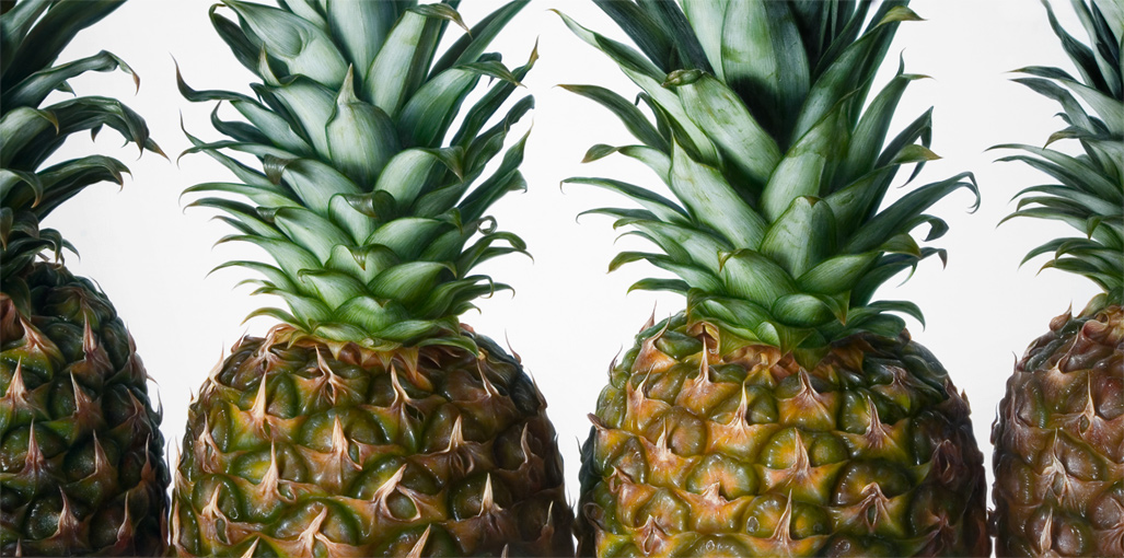 13-Pineapple-Antonio-Castelló-Avilleira-Visual-Art-with-Hyper-Realistic-Paintings-www-designstack-co