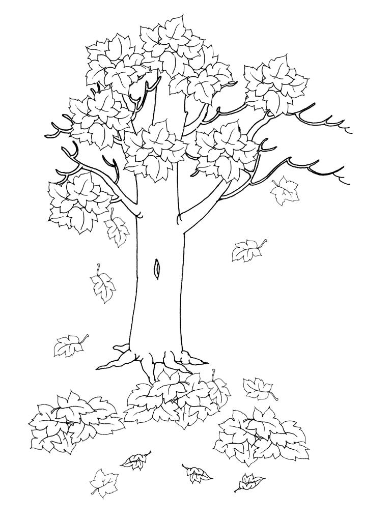for Suelo organico para dibujar