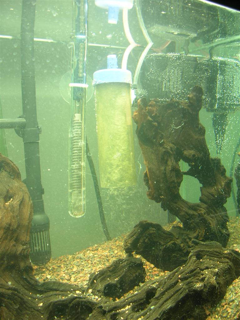 Planted aquarium co2 reactor testing for Aquarium co2