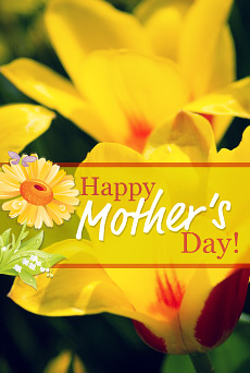 Mothers Day IPhone Wallpapers Free Christian Wallpapers