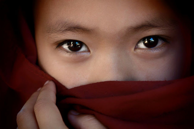 "2013 ""The Eyes"" photo contest"