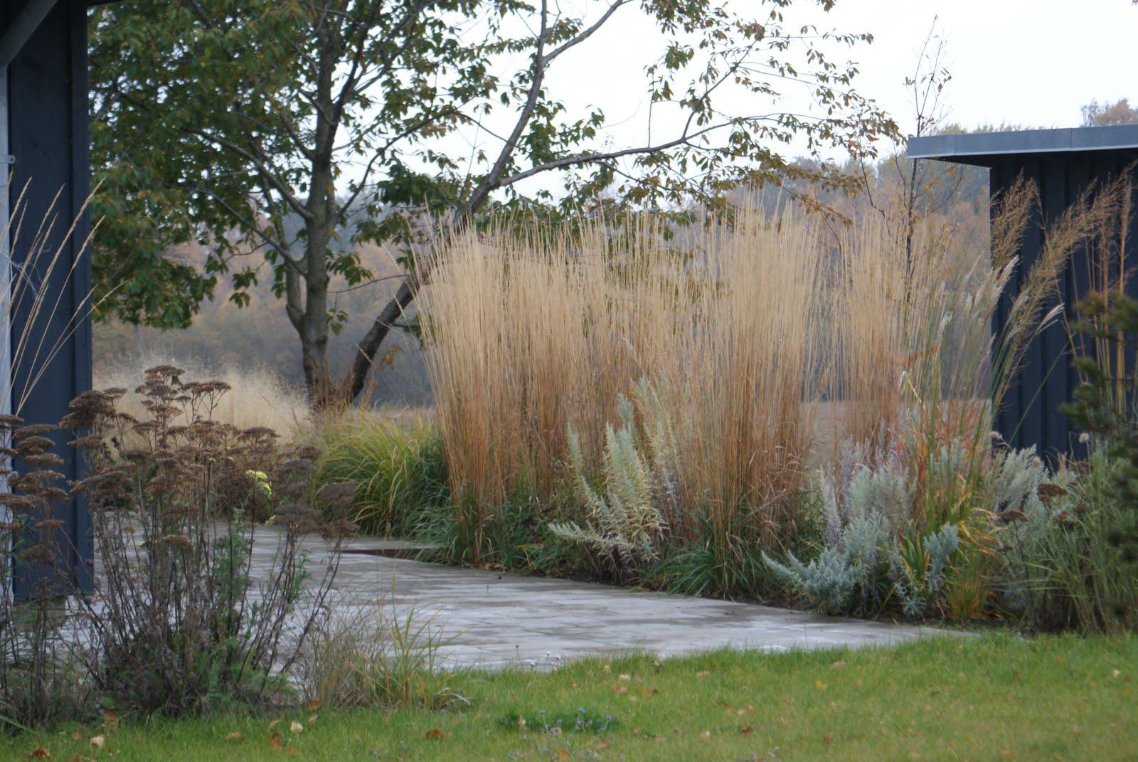 Kjeld slot: mere naturlighed med græsser i sommerhushaven