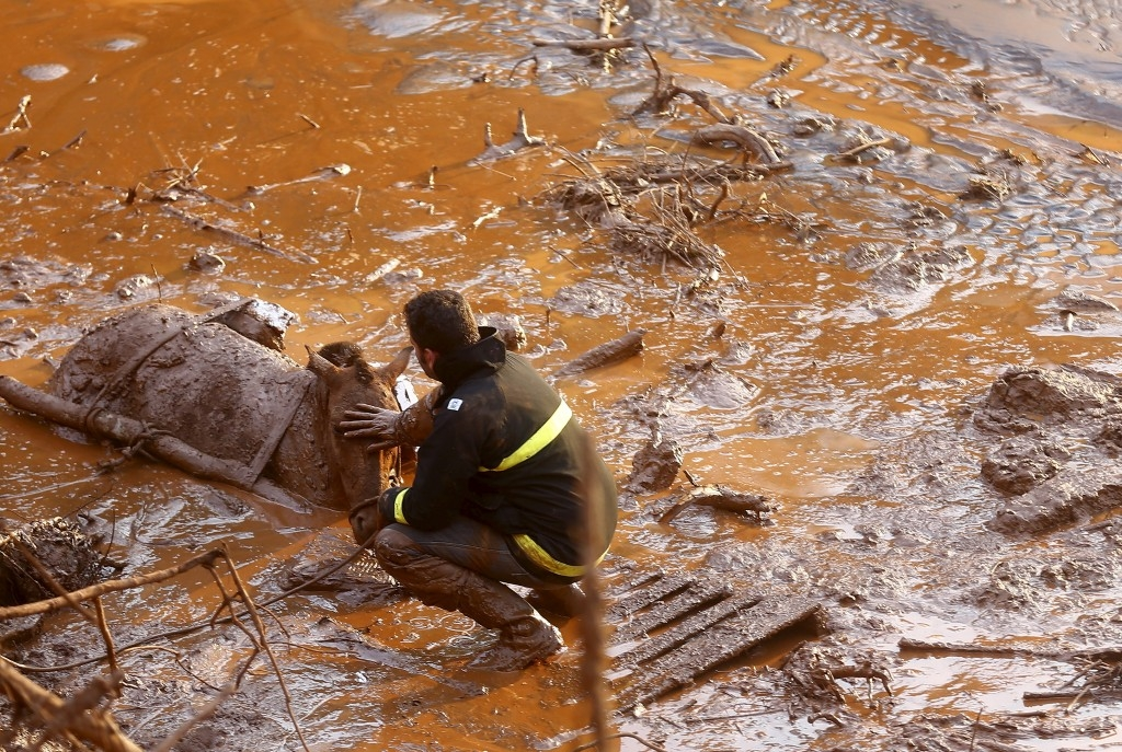70 Of The Most Touching Photos Taken In 2015 - A rescue worker comforts a horse as they attempt to save the animal following a mudslide in Mariana, Brazil.