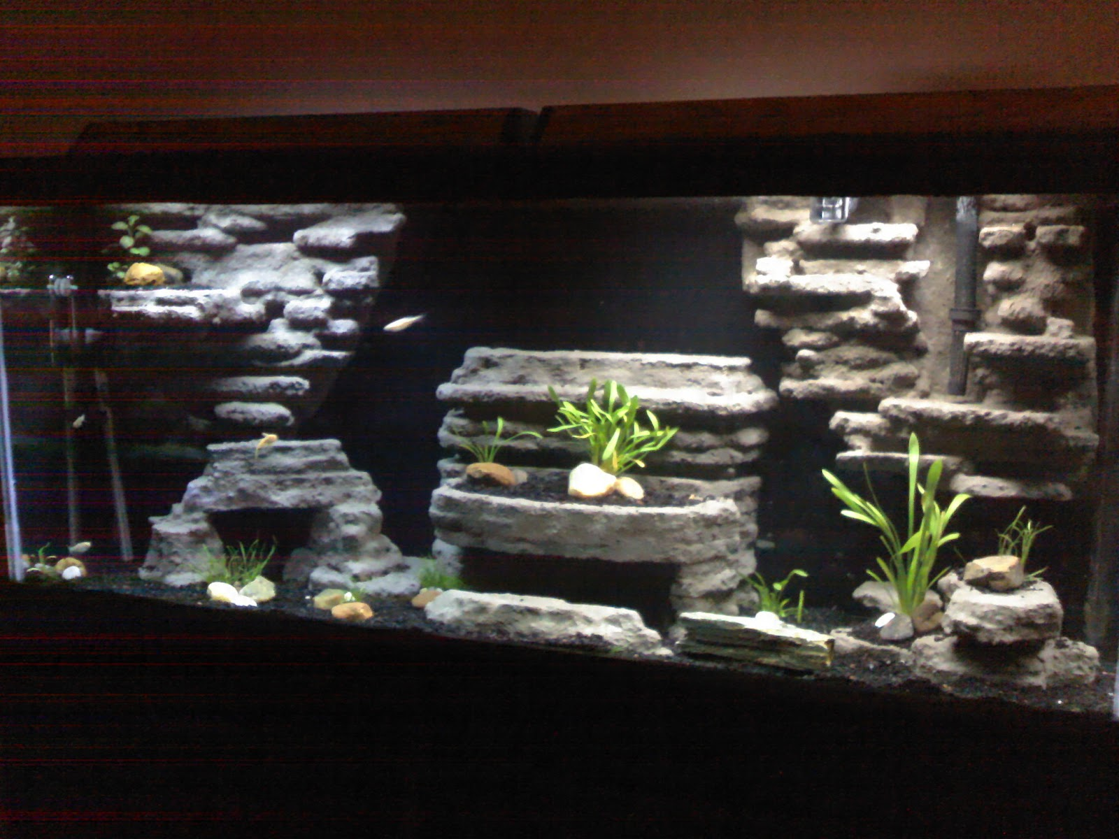 Jose 39 S Diy Ideas Styrofoam Cement Aquarium Background