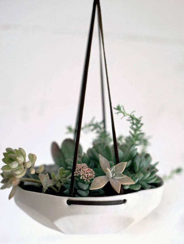 6 Unique Hanging Planters For Your Home