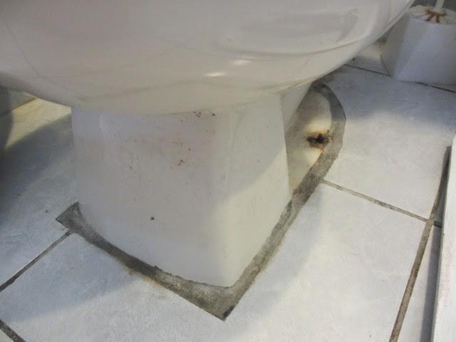 My Bathroom Floor Is Leaking : The wright time in belize ode de toilet