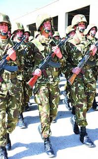 القوات البرية الجزائرية  La+8%25C3%25A8me+Division+Blind%25C3%25A9e-3