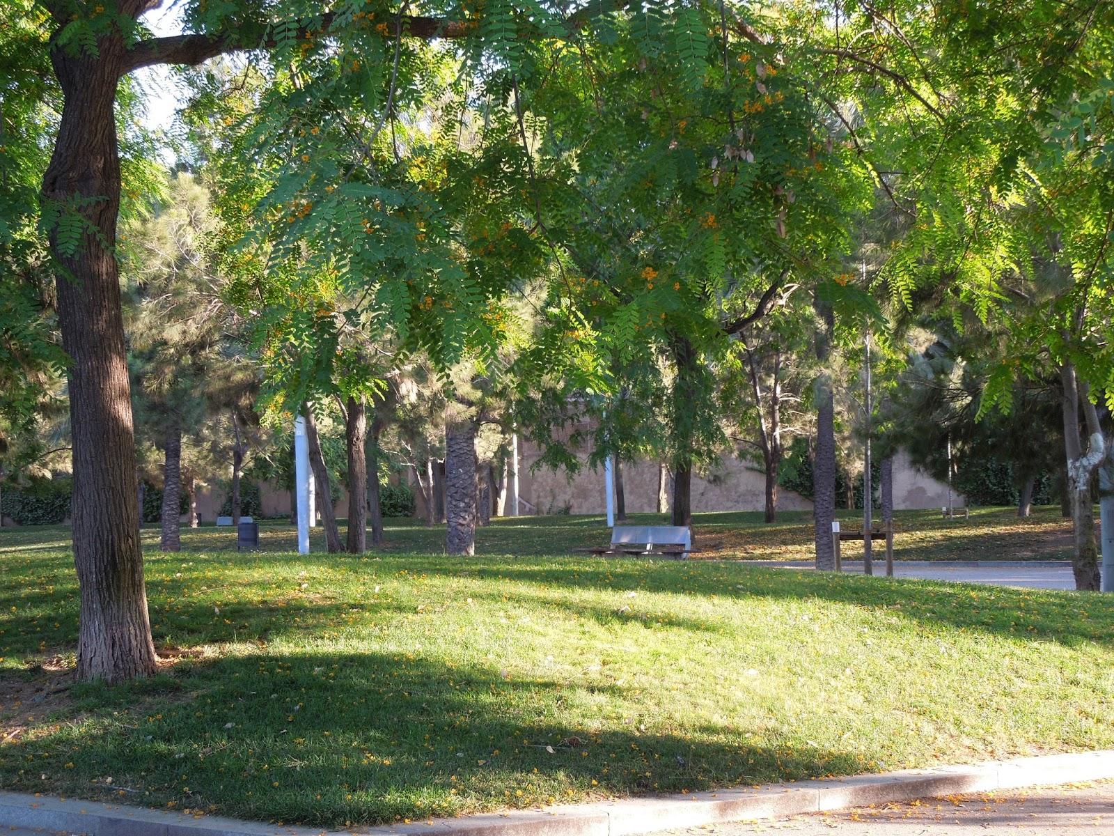 Barcelona parque de la barceloneta a dos pasos del paraiso for Parques de barcelona