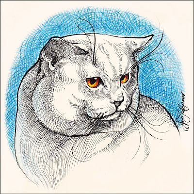 drawing of a white cat with orange eyes on blue background